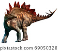 Stegosaurus from the Jurassic era 3D illustration	 69050328