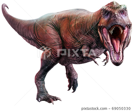 3d illustration, dinosaur, tyrannosaurus 69050330