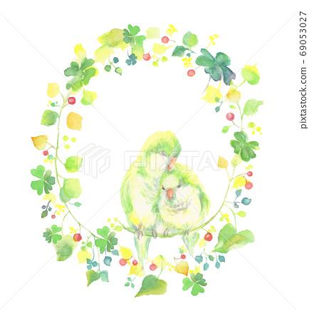 三葉草的框架與水彩畫的長尾小鸚鵡的插圖 69053027