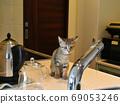 野雞小貓對自來水感興趣 69053246