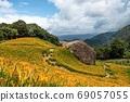 金針花季節-花蓮,秋葉山 69057055