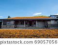 金針花季節-花蓮,秋葉山 69057056