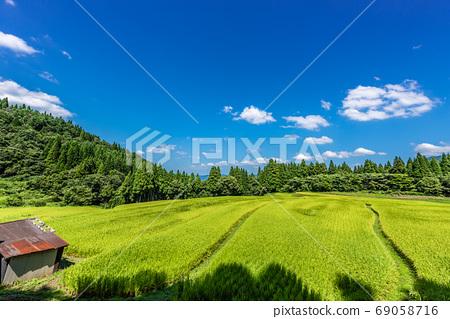 효고현 가미 정 うへ山의 계단식 가을 이미지 69058716