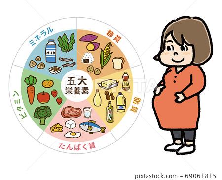 孕妇B的五种主要营养素表和插图 69061815