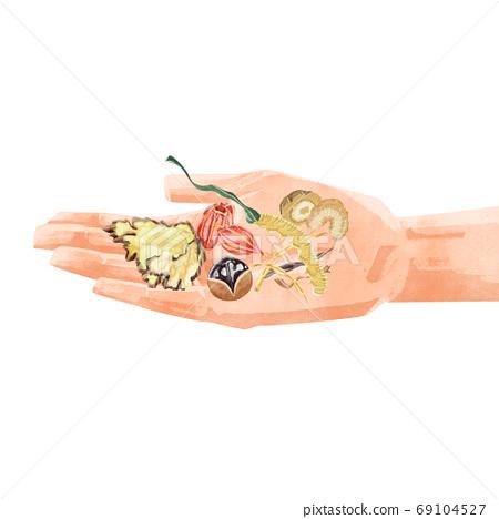 用草藥在手掌上的插圖 69104527