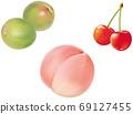 Ume_peach_cherry_real插圖 69127455