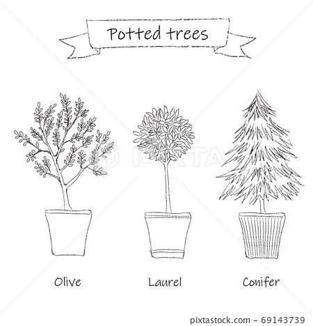 盆栽的樹線圖 69143739