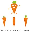 Vector carrot illustration. Healthy food, vegetable ingredients. 69156010