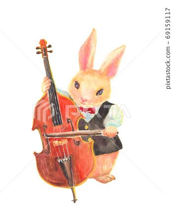수채화로 그린 콘트라베이스를 연주 토끼의 일러스트 69159117