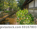 교토, 다카 세가와 부용의 꽃이 피는 여름 풍경 69167803
