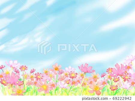 水彩畫的波斯菊領域的插圖 69222942