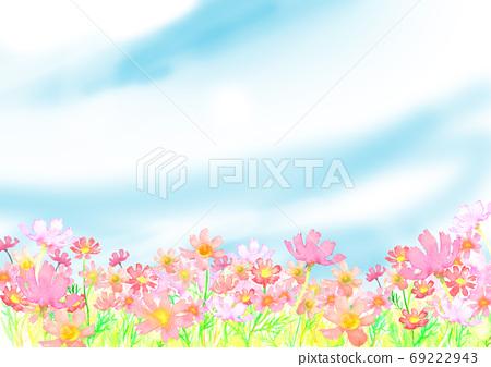 수채화로 그린 코스모스 밭의 일러스트 69222943