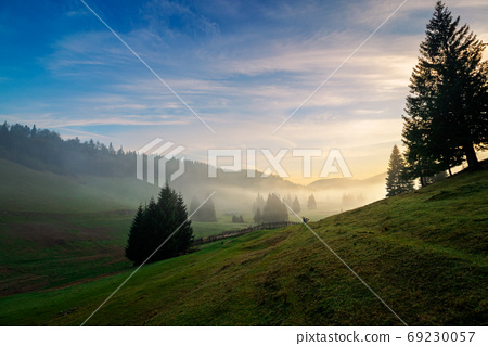 morning mist in apuseni natural park. valley full of fog at dawn 69230057