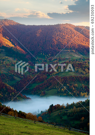 foggy morning in autumn mountains. countryside scenery in fall c 69230093