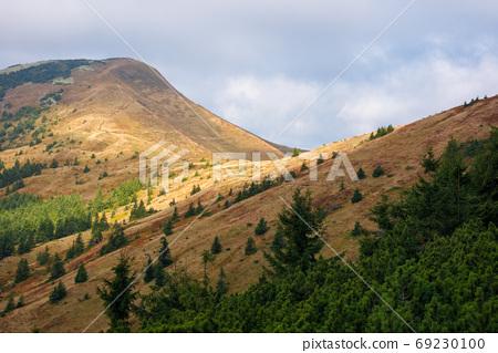 peak of the mountain strymba. carpathian landscape in autumn. pa 69230100