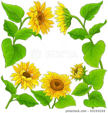 sunflower vector frame 69269268