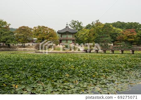 한국 경복궁 향원정 69275071