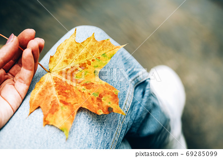 Maple leave on jeans. Autumn mood. 69285099