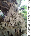 vertical photo of nature cave in Thailand 69296396
