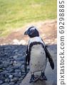 水族館企鵝 69298885
