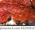 秋天的色彩鮮豔不堪 69300816