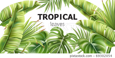 Green tropical leaves banner with place for text. Various flowers 69302054