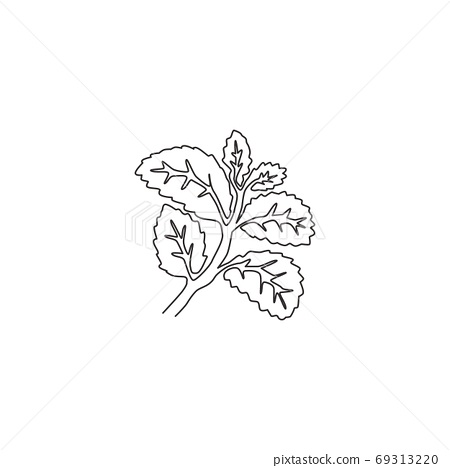 One continuous line drawing of healthy organic mint leaves for farm logo identity 69313220
