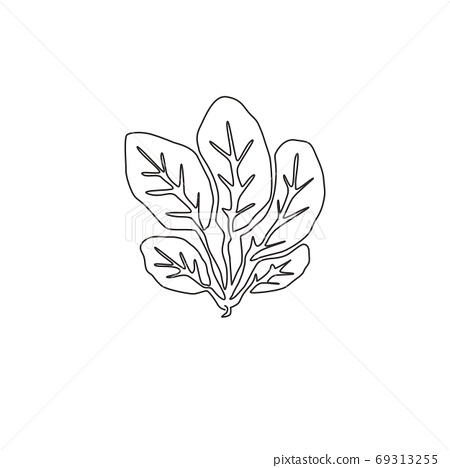 Single continuous line drawing of whole healthy organic green spinach leaves for farm logo identity 69313255