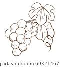 復古和時尚的插圖素材:葡萄線描 69321467