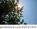 夏天的天空和阳光 69322342