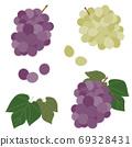 一套葡萄果實和葉子 69328431