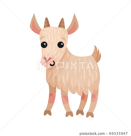 Goat as Farm Animal with Horns Vector Illustration 69335947