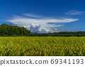 Satoyama where rice ears are colored under the summer clouds 69341193