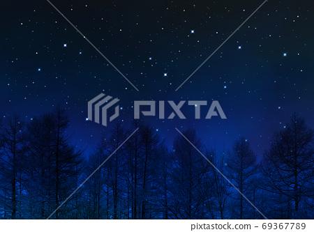 겨울의 밤하늘과 낙엽의 나무, 창조 예술. 69367789