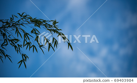 아나모픽 렌즈로 촬영 한 영화와 같은 시네마 스코프의 사진 69403984