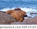 Bizarre boulders on the Cote de Granit Rose in Brittany 69414165