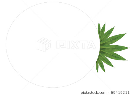 The copy space layout is created from green leaves. 69419211