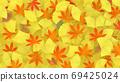 깔린 단풍, 낙엽, 은행 나무 잎 69425024