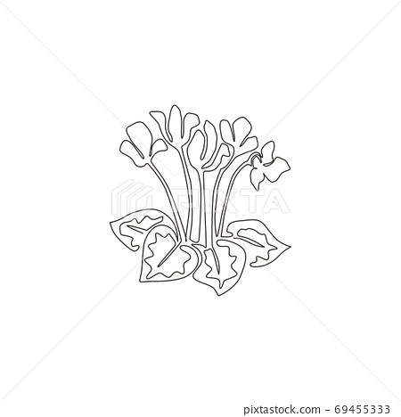 Single continuous line drawing beauty fresh swinebread cyclemen for home decor wall art poster print 69455333
