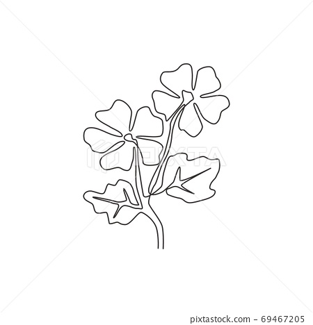 Single one line drawing of beauty fresh common mallow for home decor wall art poster print 69467205
