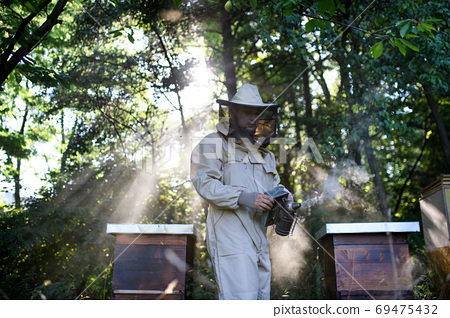 Portrait of man beekeeper working in apiary, using bee smoker. 69475432
