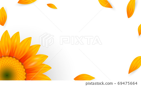 Template banner with realistic sunflower petals 69475664