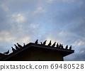 새벽 鳩舎 鳩舎 지붕에 집결 비상 전에 비둘기들 69480528