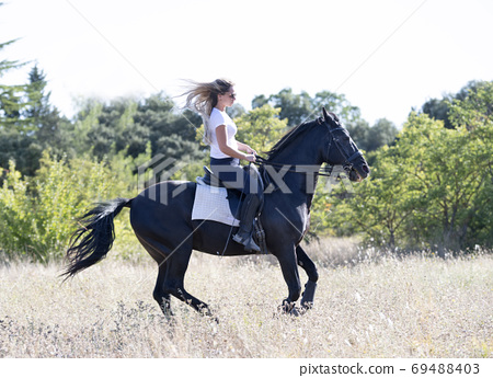 riding girl and horse 69488403
