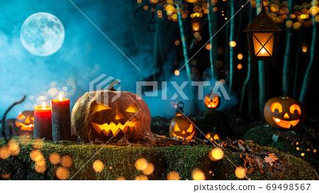 Halloween pumpkins on dark spooky forest. 69498567