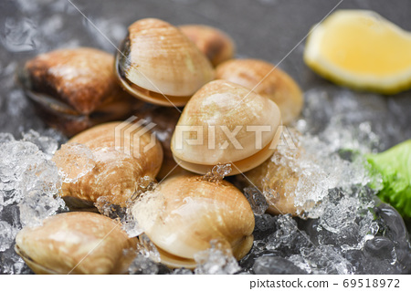 Seafood shellfish on ice frozen at the restaurant - Fresh shell 69518972