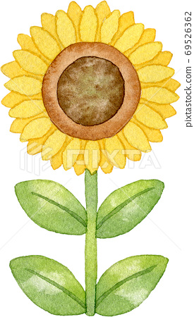 向日葵(1) 69526362