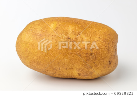 馬鈴薯的 69529823