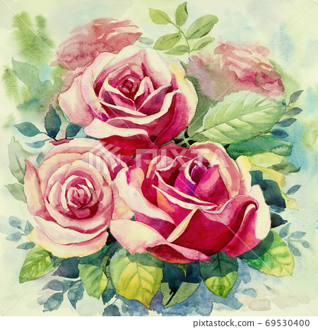 Watercolor painting red color of roses flower. 69530400