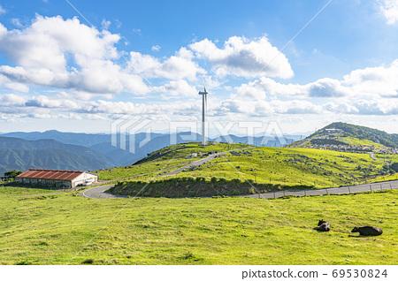 초여름의 시코쿠 카르스트 및 목장 69530824